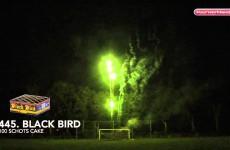 445 Black Bird – Black Label Vuurwerk – Vuurwerkland
