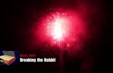 5002 | Breaking the Habbit 183sh | CAT2