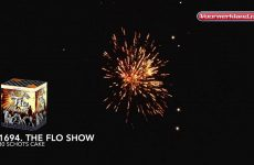1694  The Flo Show – Dynasty Collection – Vuurwerkland