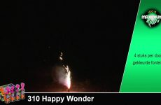 0310   Happy Wonder