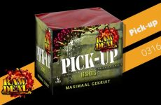 03164 Pick up – Lesli Vuurwerk