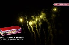 6402  Family Party – vuurwerkland