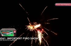 6561  Important Pyro Show – special collection – Vuurwerkland