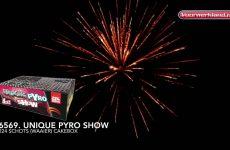 6569  Unique Pyro Show